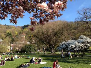 Freiburg Stadtpark